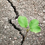 Avoid Communication Breakdown; Find Cracks In Your Small Biz Culture