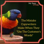 """The Mistake Copywriters Make When They """"Use The Customer's Words"""""""