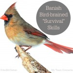 Why You Need To Banish Bird Brained Survival Tactics